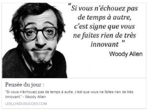 Echec_Woody_Allen